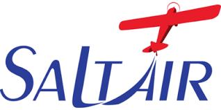 Salt Air logo
